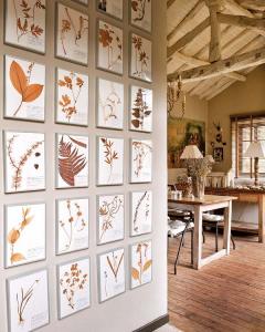 great-botanical-prints