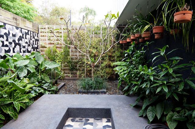 casa de marcelo rosenbaum
