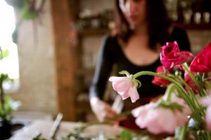 estudio de flores