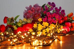 pisca pisca com flores
