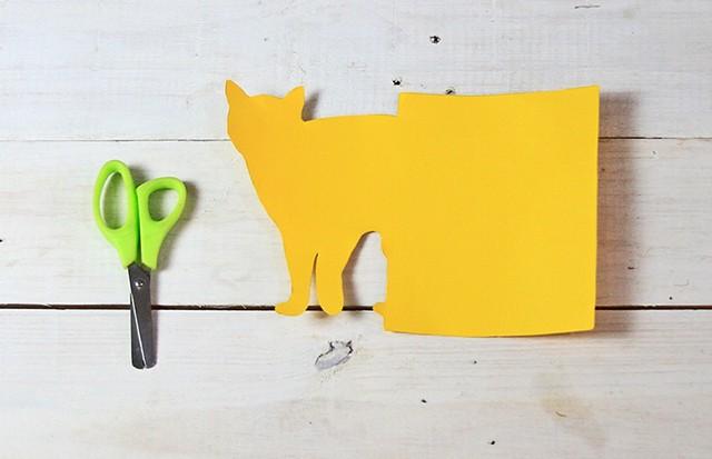 gatos coloridos na estante 5