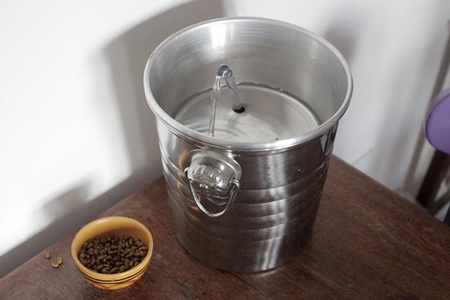 bebedouro fonte de agua para gatos 4