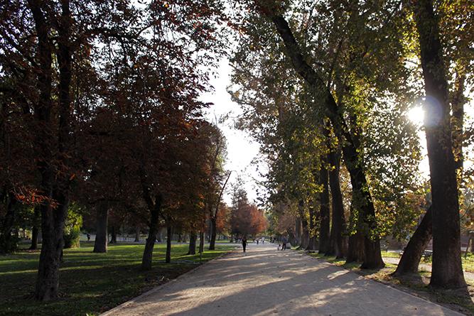 parque quinta normal 5