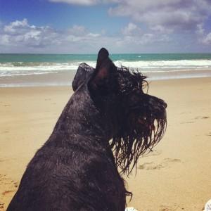 chica na praia